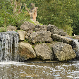 Water by Domen Dežman - Nature Up Close Water ( water, pure, nature, clean, green, waterfall, rock, lake, pond )