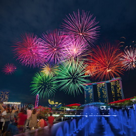 Sparkling dandelion illuminating the sky by Sam Song - City,  Street & Park  Night ( sands, ndp, ndp2015, bay, mbs, fireworks, marina, singapore )