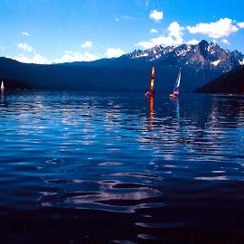 SAILBOATS ON REDFISH LAKE by Gerry Slabaugh - Transportation Boats ( sawtooths, idaho, redfish lake, sailboats, rockies, lake )