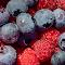 Wet Berries 16 07 18.jpg