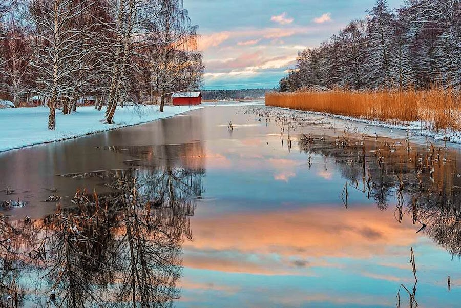 Winter in Sweden by Dan Westtorp - Landscapes Waterscapes
