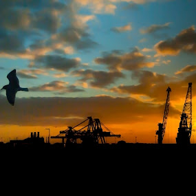 by Christian Rawlinson - City,  Street & Park  Vistas ( ferry, christian rawlinson, sunrise, hull )