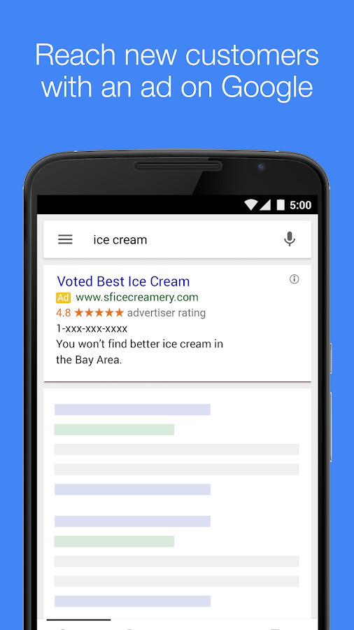 AdWords Express Screenshot 0