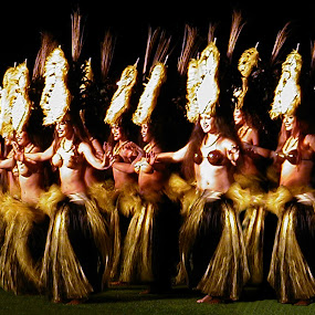 Luau by Joseph Vittek - People Musicians & Entertainers