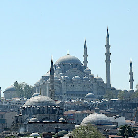 Magnificent new Blue Mosque by Saeed Babar - Buildings & Architecture Architectural Detail