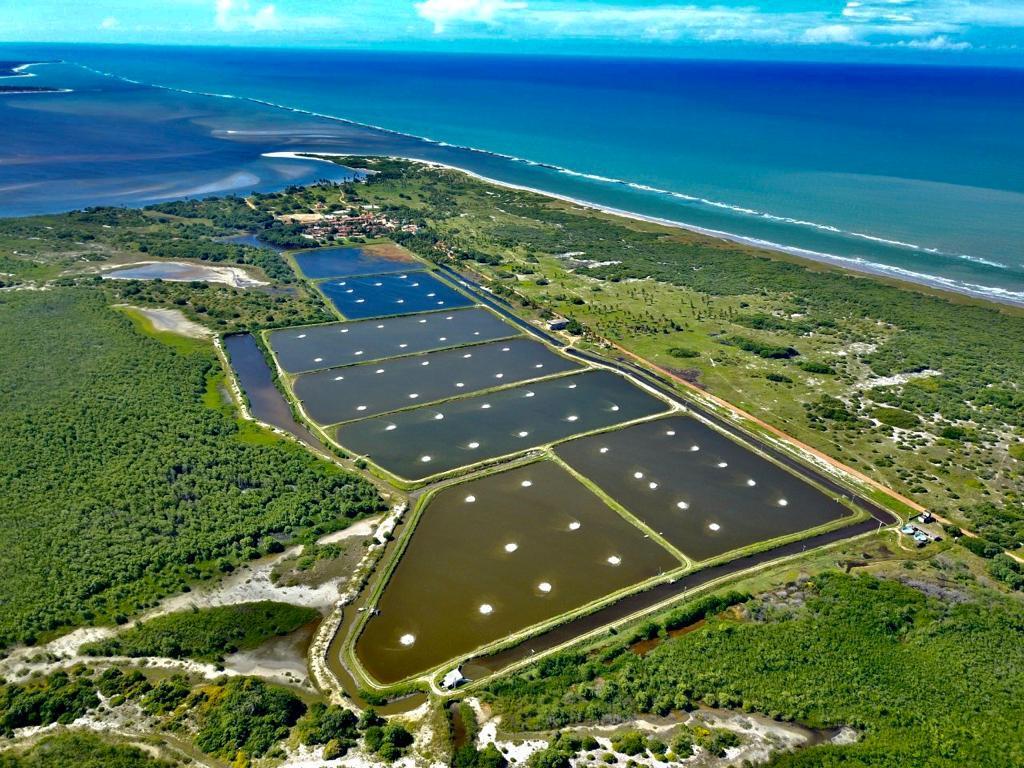 Fazenda de camarão à venda, 590000 m² por R$ 20.000.000  - Rio Tinto/PB