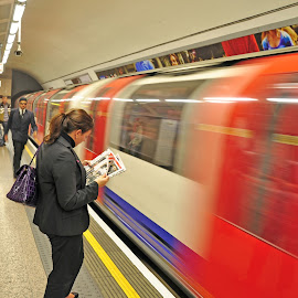 Oblivious by Scott Thiel - Transportation Trains ( england, subway, london, tube, movement, underground, city,  )