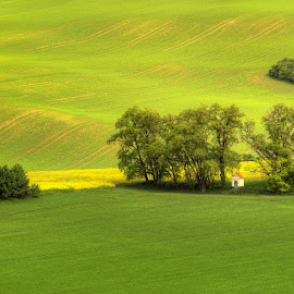 South Moravia by Klaus Müller - Landscapes Prairies, Meadows & Fields ( green, trees, chapel, landscape, fields )