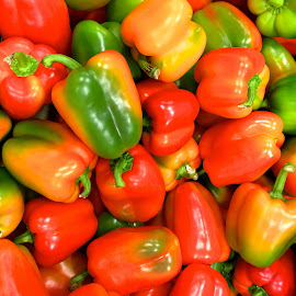 Peppers by Richard Duerksen - Food & Drink Fruits & Vegetables ( many, peppers, red, ripe peppers, green, yellow,  )