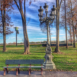 Afternoon Delight by Steven Hughes - City,  Street & Park  City Parks ( park, delaware )