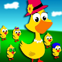 Five Little Ducks Song And Top Nursery Rhymes