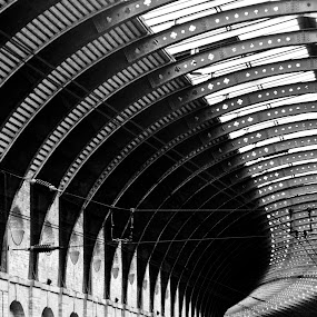 York Railway Roof by Bearded Egg - Buildings & Architecture Public & Historical ( roof, railway, black and white, metal, yorkshire, york, architecture )