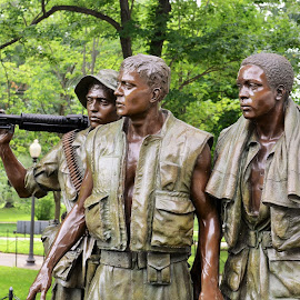 Vietnam Memorial by Kurt Bailey - Buildings & Architecture Statues & Monuments
