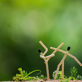 Matchstick Photography by Dileep MB - Artistic Objects Other Objects ( macro, nature, fight, green, matchstick )