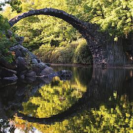 Rakotzbrücke Kromlau by Roswitha Schlüter - Buildings & Architecture Bridges & Suspended Structures ( nature, lake, bridge, parc )