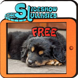 S-Lullabies: Animals FREE