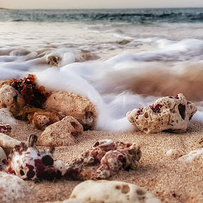 Waves rushing in by Clarissa Human - Landscapes Beaches ( water, beaches, waves, long exposure, ocean, ocean view, rocks,  )