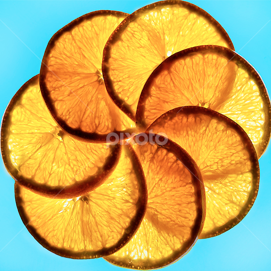 by Marianna Armata - Food & Drink Ingredients ( orange, ring, fruit, overlap, blue, food, translucent, slice, circle, marianna armata, transparent )
