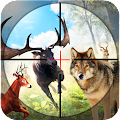 Safari Wild Animal Hunting 3D