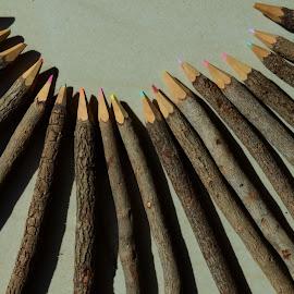 by Pradeep Kumar - Artistic Objects Still Life