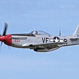 Doug Matthew's P-51D The Rebel by Jim Baker - Transportation Airplanes
