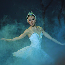 Swan Lake by Francisco Little - People Musicians & Entertainers ( perform, swanlake, ballet, stage, dance )