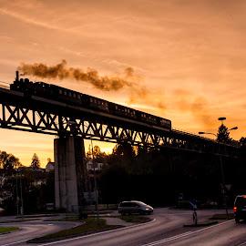 Steam Locomotive MLV Zwettl Dirndlexpress  by Franz  Adolf - Transportation Trains ( steam locomotive, locomotive, train )