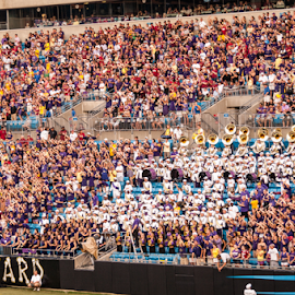 ECU Opening game against USC by Myra Brizendine Wilson - People Group/Corporate ( ecu pirates game, nc, football game, charlotte, ecu vs usc gamecocks, college football, football stadium, panthers stadium,  )