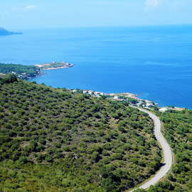 Roads on green hills and sea view by Svetlana Saenkova - Landscapes Travel ( blue water, road, aerial, sea,  )