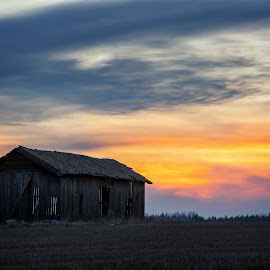Back to the country by Johan Lennartsson - Landscapes Sunsets & Sunrises ( countryside, field, sweden, barn, sunset, dark, uppsala, night, spring, rural )