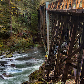River Tracks by John Matzick - Buildings & Architecture Bridges & Suspended Structures ( old, wood, railroad, retro, trestle, road, travel, transportation, landscape, rustic, vancouver, historic, nature, trail, water, structure, hefty, vintage, ravine, british, beautiful, canyon, sturdy, tracks, fortified, steel, pass, wooden, railway, strong, route, background, outdoors, bridge, view, span, river )