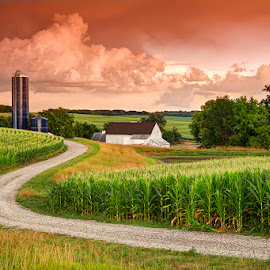 Summertime in Nebraska by Ken Smith - Landscapes Prairies, Meadows & Fields ( rural nebraska, summer, landscape )