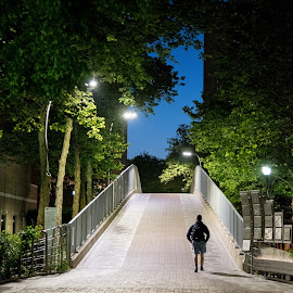 The lonely way by Tomek Karasek - City,  Street & Park  City Parks ( walking, single person, nigt, trees, bridge, dusk )