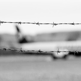 by Guy Henderson - Transportation Airplanes ( fence, airport, black and white, wire, airplane, no entry, barbed wire )