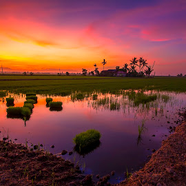 Morning iii by Ziz Abd Aziz - Landscapes Sunsets & Sunrises ( relax, tranquil, relaxing, tranquility )