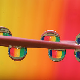 Color Drops..... by Aroon  Kalandy - Abstract Water Drops & Splashes