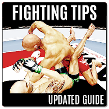 Free Guide MMA Fighting Clash