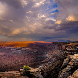 A Storm A Brewing by Ron Biedenbach - Landscapes Deserts ( utah, sky, canyonlands national park, canyon, storm, weather, desert, landscape )