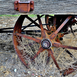Rusted Wagon Wheels by Erin Czech - Artistic Objects Antiques ( wood, wagon wheel, wagon, rust, weathered )