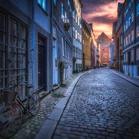 Magstræde by Ole Steffensen - City,  Street & Park  Street Scenes ( copenhagen, cobblestones, bike, street, denmark, københavn, magstræde,  )