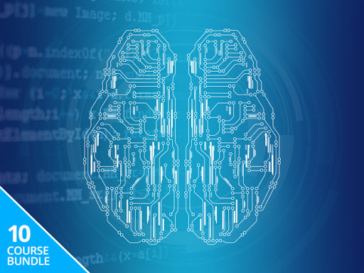 Master machine learning in just 10 courses