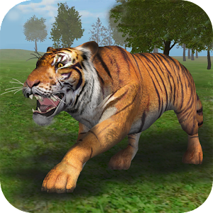 Real Tiger Simulation 2016