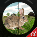 Game Rabbit Hunting Challenge apk for kindle fire