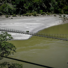 The connection by Akashneel Banerjee - Buildings & Architecture Bridges & Suspended Structures ( nature, tree, green, bridge, river )