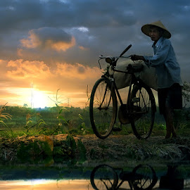 by 3 Joko - Transportation Bicycles ( person, bike, sunset, man )