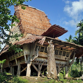My traditional Home from Nias - Indonesia by Fidelis Gea - Buildings & Architecture Homes ( pulau nias, nias utara, indonesia, jakarta, nias )