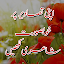 Free Download Urdu On Picture APK for Samsung