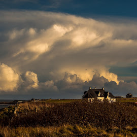 Coastal Cottage by Scott Hay - Landscapes Cloud Formations ( grasses, scotland, cottage, white clouds, john o groats, coastal, dramatic skies )