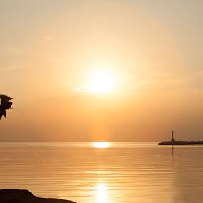 waiting by Onti Toulis - Wedding Groom ( sunset, wedding, greece, sea, groom, photography, studiaki )
