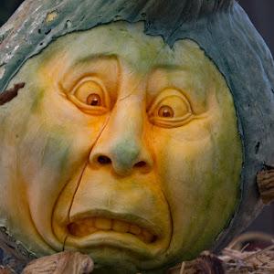 Pumpkins-7.jpg
